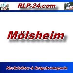 RLP-24 - Mölsheim - Aktuell -
