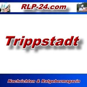 RLP-24 - Trippstadt - Aktuell -